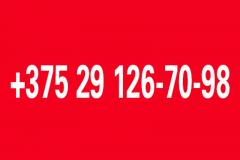 Гарачыя тэлефоны БАЖ у сувязі з выбарамі