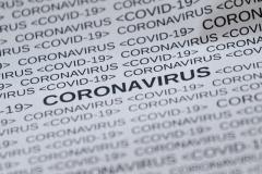 Где искать данные о COVID и как их анализировать. Конспект вебинара с экспертом по статистике