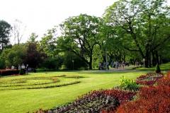 АПБ запрашае на прэс-прагулку і пікнік у Батанічным садзе