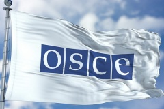 «Выборы продемонстрировали полное отсутствие соблюдения демократических обязательств», — заявление ОБСЕ