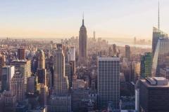 Университет Нью-Йорка предлагает стипендию для журналистов. Дедлайн 18.09.2019