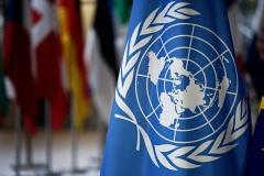 ООН и ОБСЕ составили рекомендации по обеспечению свободы выражения мнений и проведению выборов в период пандемии COVID-19