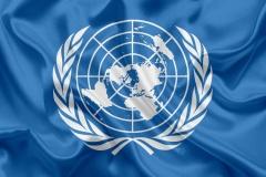 В ООН требуют прекратить репрессии в Беларуси перед выборами