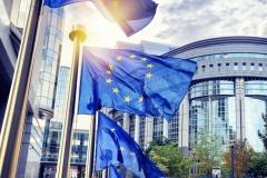 Европейский парламент отметил усилия БАЖ по освобождению журналиста Сергея Сацука