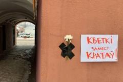 Суд над врачом и журналисткой: сестра Бондаренко говорит, что Катерина Борисевич согласовывала с ней информацию