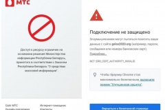 Белорусским пользователям ограничили доступ к сайту «Голос»