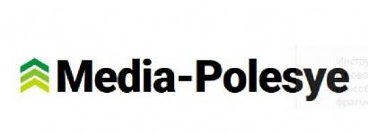 Сайт «Медиа-Полесье» оштрафовали на 3240 рублей за «содействие распространению панических настроений»